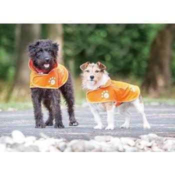 Visibility Dog Coat